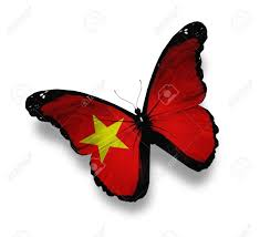 Vietnamese Freedom Flag Vietnamese Flag Butterfly Isolated On White Stock Photo Picture