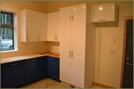 Kitchen Cabinets Plywood Best Plywood For Kitchen Cabinets In Bangalore Kitchen