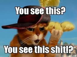 Puss In Boots Meme - outraged puss in boots
