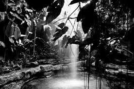 carte monde noir et blanc 4 galeries photos faciles à reproduire images gratuites à