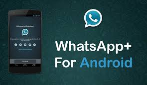 apk whatsapp whatsapp plus apk version 6 12 for android official