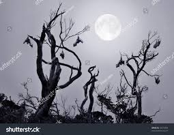 halloween moon background bats gnarled trees full moon background stock photo 70213234