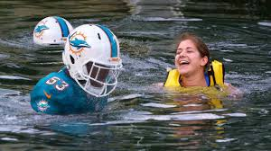 Funny Miami Dolphins Memes - florida resort allows guests to swim with miami dolphins funny