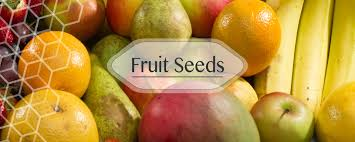 buy fruit online buy online vegetable seeds in india flower seeds hybrid herb seeds
