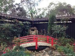 cherry blossom festival auburn botanic gardens 2016 sydney