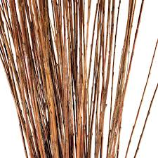 Decorative Branches For Vases Uk Decorative Branches Straight Willow Branches Natural