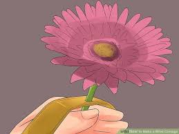 how to make a wrist corsage with pictures wikihow