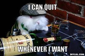 Drinking Problem Meme - 30 most funny rabbit meme pictures and images