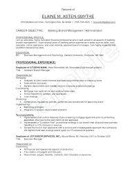 bank resume template mortgage administrator resume bank resume templates 2017 free