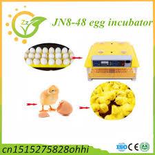 december 2015 incubator egg