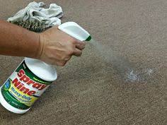 How To Remove Rug Stains How To Remove Carpet Stains Top 5 Carpet Stains Coit Recipes