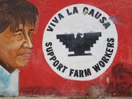 cesar chavez arizona candidate cesar chavez faces challenge from labor leader s