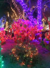 ethel m chocolate factory las vegas holiday lights tickets now available for ethel m chocolates 22nd annual holiday