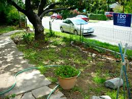 Landscaping Ideas Around Trees Applied Landscape Design Share Landscaping Ideas Around Trees