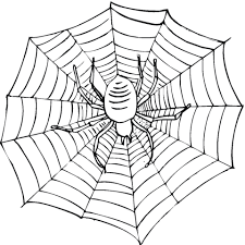 Scary Spider On A Web Coloring Page Free Printable Coloring Pages Web Coloring Pages