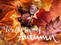 quotes about beauty of fall autumn archives eliston button
