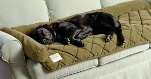 pet sofa covers that stay in place amazing pet covers for couches and just found this dog couch covers