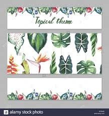 tropical hawaii leaves palm tree theme in a watercolor style stock