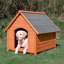 Igloo Dog House Shop Dog Houses At Lowes Com