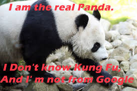 Panda Meme - how to use memes to get traffic and backlinks ismoip