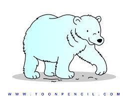 easy polar bear drawing