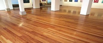 buy caribbean pine flooring at wholesale prices