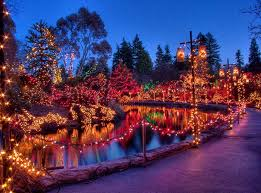 Vandusen Botanical Garden Lights Park Board Says Festival Of Lights In Vandusen Botanical Garden