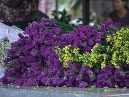 funeral flowers swanborough funerals