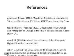 academic identity and disciplinarity