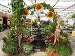 fairy garden classes at maplewood produce u0026 greenhouse ship saves