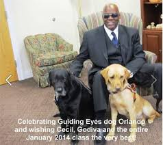 Blind Dog And His Guide Dog 63 Best Guiding Eyes For The Blind Images On Pinterest