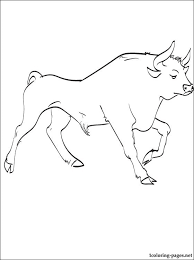 bull coloring coloring pages