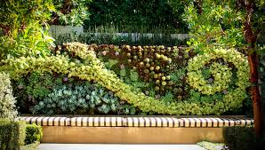 beautiful ideas how to build a living wall astounding design how