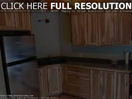 Hickory Kitchen Cabinets Wholesale Kitchen Decoration