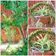 Topiary Outdoor Outdoor Topiary Wreath Mixed Hanging Planter