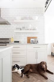 Ikea Kitchen White Cabinets 296 Best Dream Kitchen Images On Pinterest Dream Kitchens