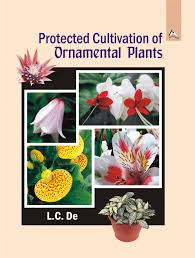 protected cultivation of ornamental plants isbn 978 81 7910 532 0