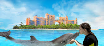 free nights at atlantis in the bahamas could be very costly