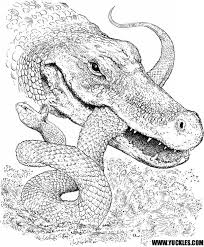 free simple alligator coloring pages children af8vj