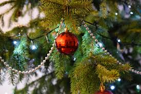 how to take care of a real christmas tree christmas decore