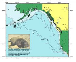Aleutian Islands Map National Marine Mammal Laboratory
