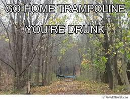 You Re Drunk Meme - go home you re drunk strange beaver