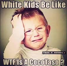 Wtf Is A Meme - internet meme of the day â wtf is a cocotaso babal㺠blog