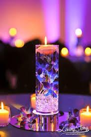 plant sale u2013 alta peak 20 best sarah seven images on pinterest bridesmaids wedding