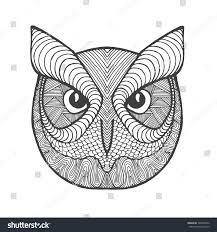 drawn spirit owl pencil and in color drawn spirit owl