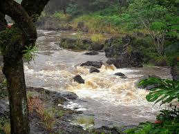 Hawaii Rivers images Wailuku river state park hawaii state parks jpg