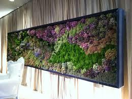 1106 best green wall images on pinterest vertical gardens green