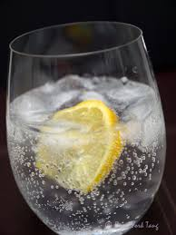 vodka tonic lemon gin and tonic u2013 with a twist myphotojourney co uk