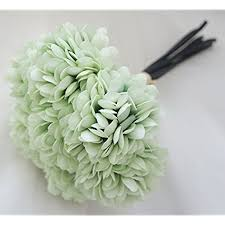 mint green flowers mint green flowers