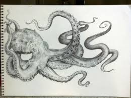 related keywords u0026 suggestions for octopus sketch